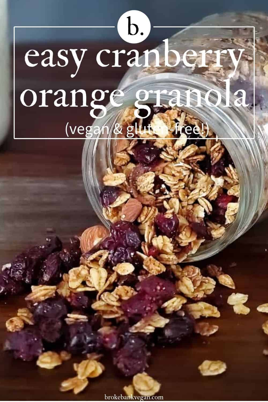 Best Ever Cranberry Orange Granola