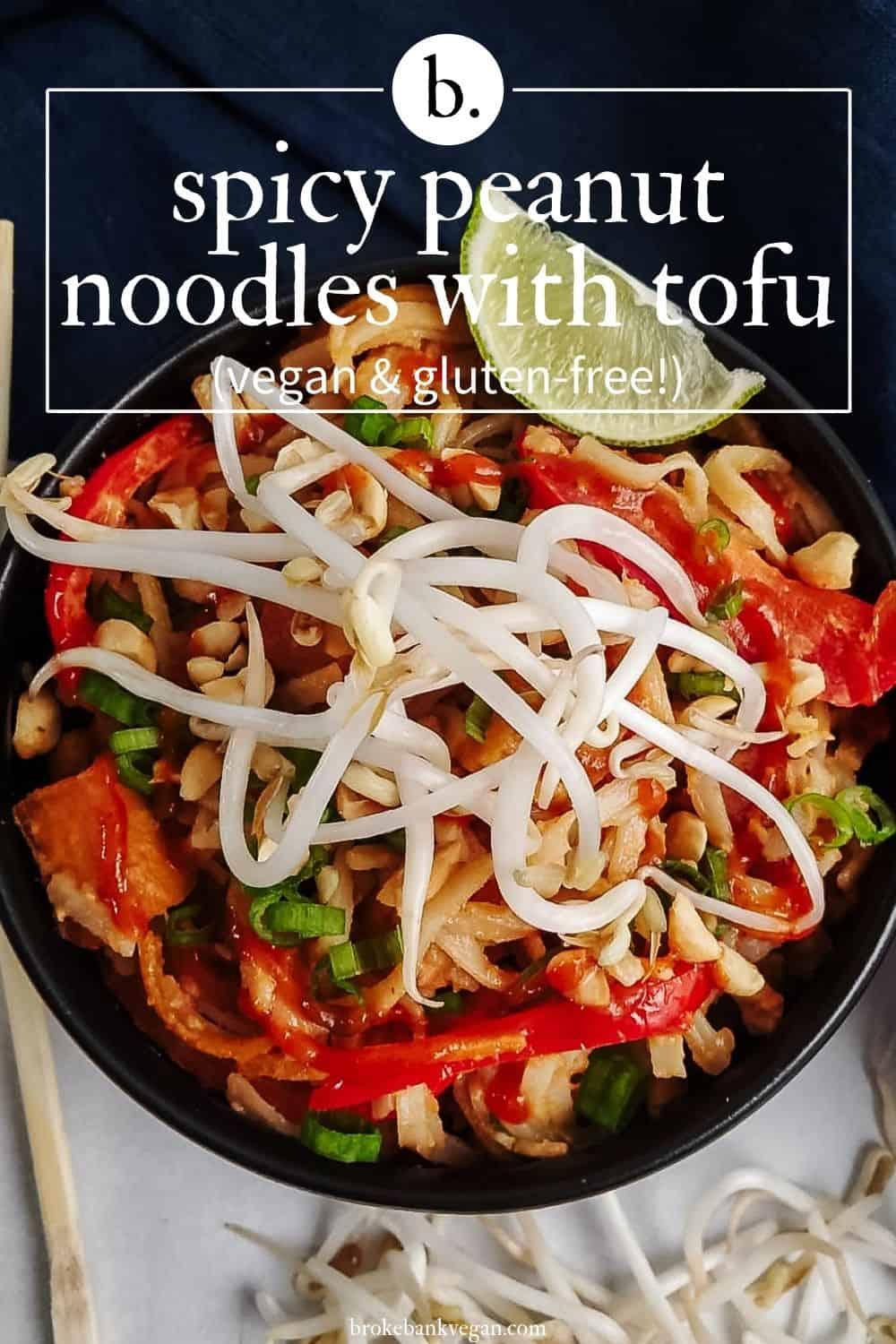 Spicy Peanut Noodles With Tofu