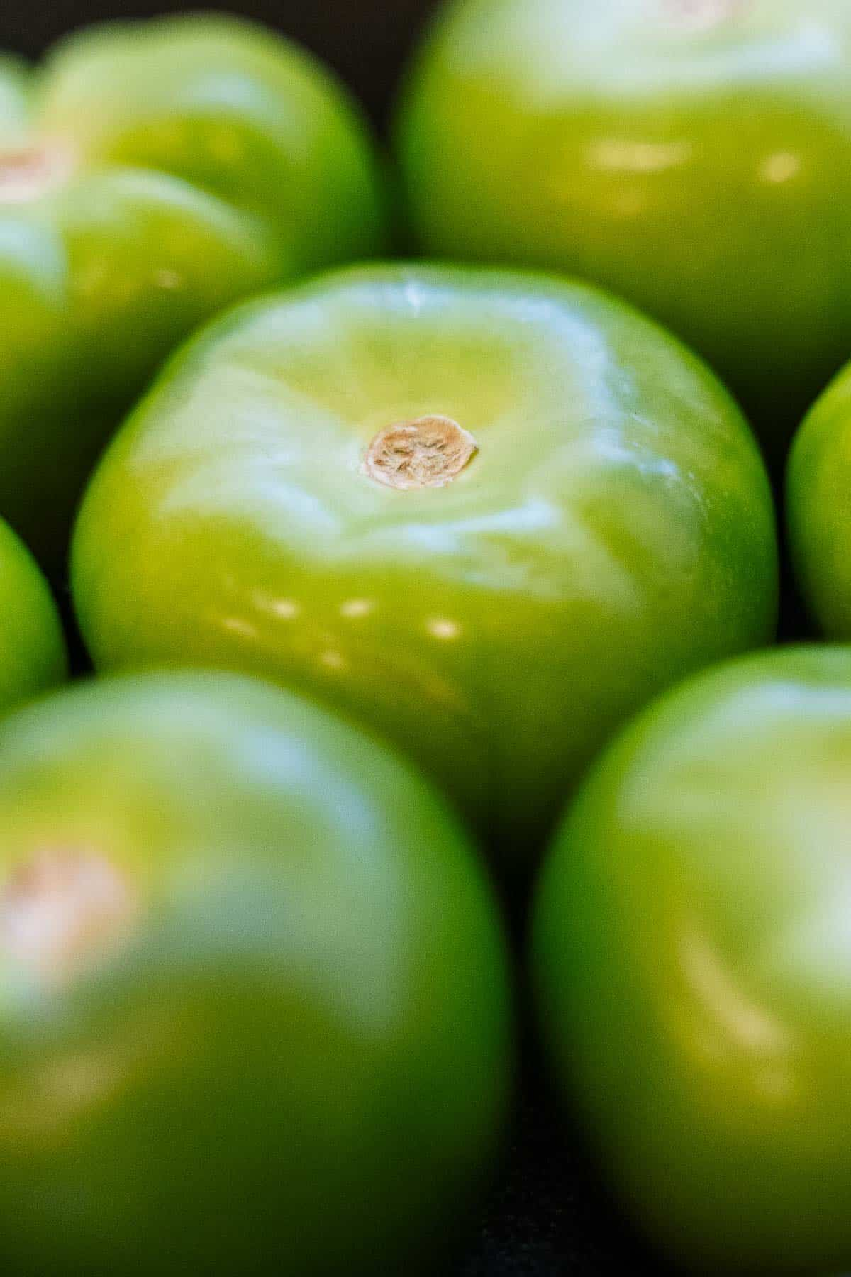 Close Up of Tomatillos