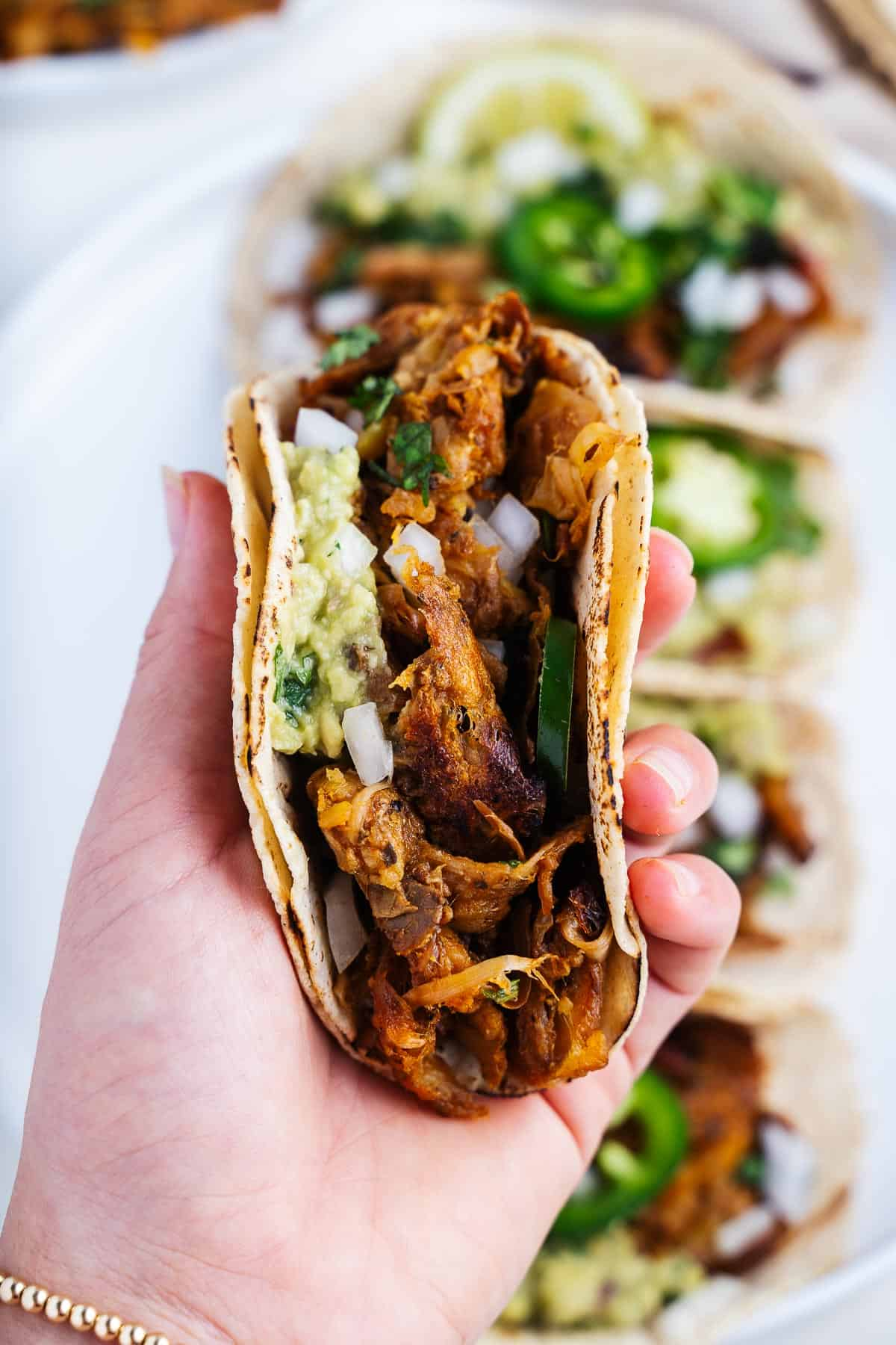 Jackfruit Carnitas in a Taco