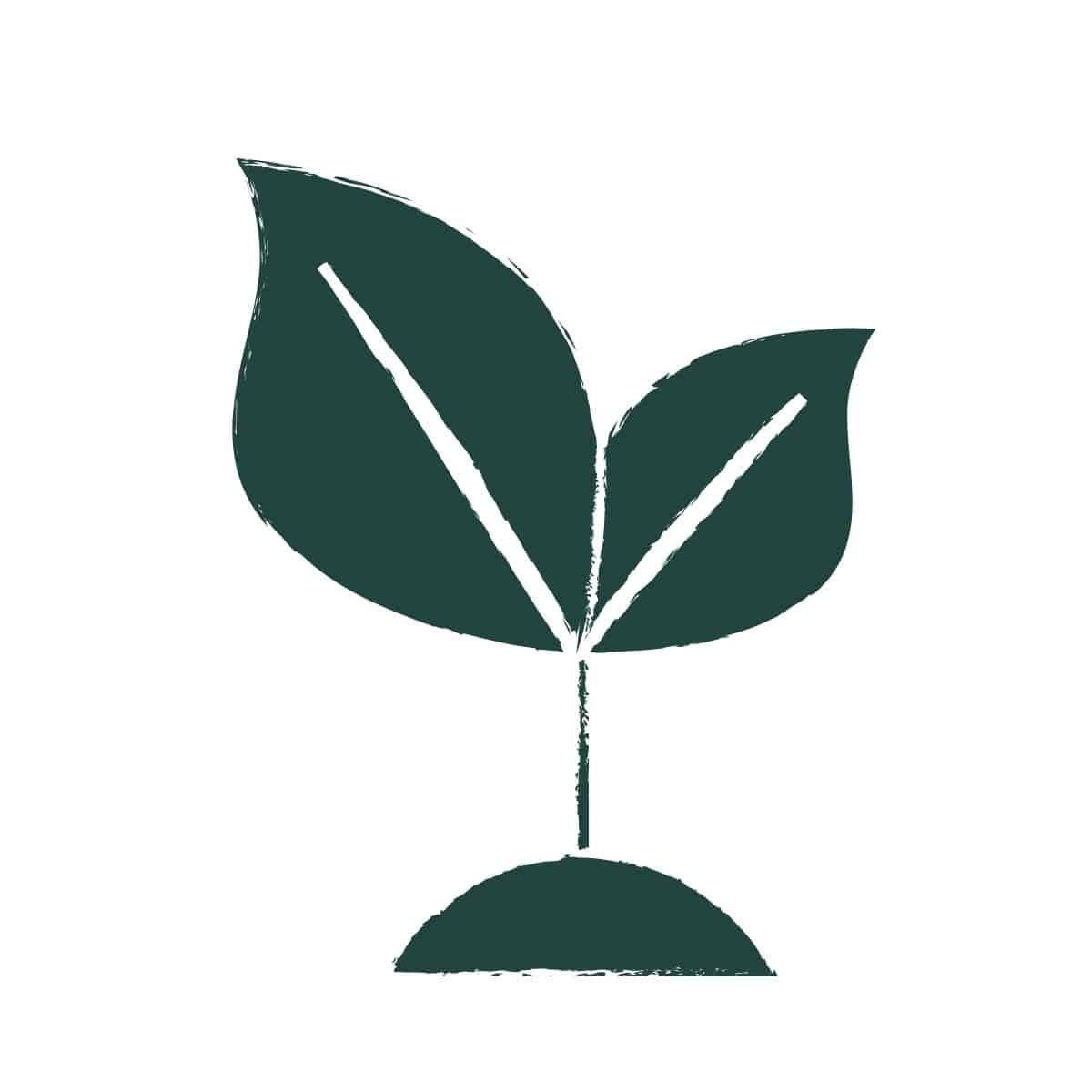 Broke Bank Vegan Sprout Logo