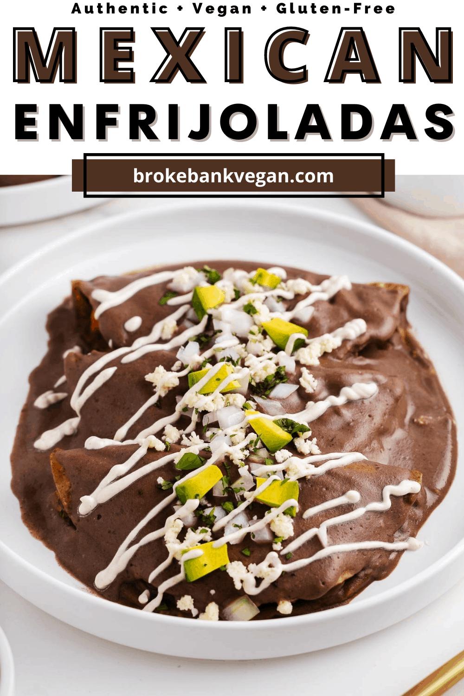 Mexican Enfrijoladas on a Plate