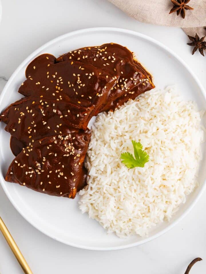 Oaxacan Enmoladas With Rice on a Plate