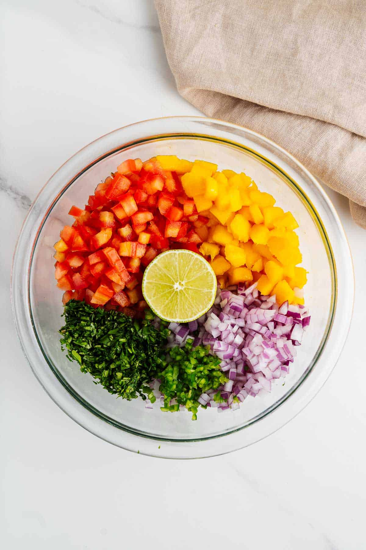 Chopped Tomatoes, Mangoes, Red Onion, Chiles, Cilantro, and Lime in a Bowl